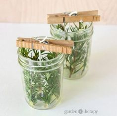 Evergreen Pressed Herb Candles Make your own pressed herb candles using herbs … - Candle Making Homemade Candles, Homemade Gifts, Diy Gifts, Make Candles, Diy Candles Easy, Homemade Wedding Gifts, Easy Handmade Gifts, Evergreen Herbs, Velas Diy