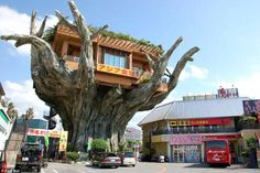 Gajumaru Treehouse Diner in Okinawa overlooks the picturesque Naha Harbour. Customers enter via the spiral staircase at the back.