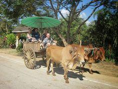 Herumreisen ist im Land des Lächelns recht angenehm, da wie bei den meisten Dingen im thailändischen Alltagsleben keine übertriebene Eile aufkommt. Mehr zum Thema Reisen in Thailand findet man hier: http://www.thailand-bereisen.com/p/reisen-im-land.html