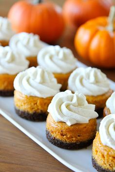 Mini pumpkin cheesecakes with gingersnap crusts. These mini pumpkin cheesecakes with gingersnap crusts are a fall favorite! Spiced to perfection and topped with a vanilla bean whipped cream, you just can't go wrong with these little bites! Think Food, Love Food, Pumpkin Recipes, Fall Recipes, Delicious Recipes, Yummy Food, Köstliche Desserts, Dessert Recipes, Dessert Healthy