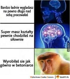 Quality Memes, Best Memes, Haha, Humor, Funny, Random Stuff, Backgrounds, Polish, Random Things