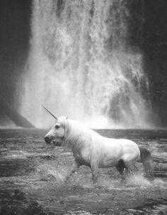 Unicorns and waterfalls