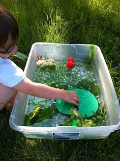 Play Create Explore: Pond/Lifecycle of a Frog Sensory Bin/Small World Play