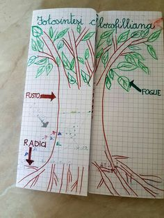 Bullet Journal, Classroom, Science, Education, Environment, School, Class Room, Flag, Teaching