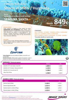 Egipto Especial Mar Rojo Semana Santa - vuelos regulares - salida 28 y 29 de marzo 2015 ultimo minuto - http://zocotours.com/egipto-especial-mar-rojo-semana-santa-vuelos-regulares-salida-28-y-29-de-marzo-2015-ultimo-minuto-4/