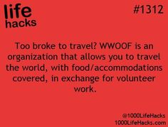 WWOOF: Volunteer work on organic and/or self sustaining farms in trade for meals, room & board. Omg I never knew this!!