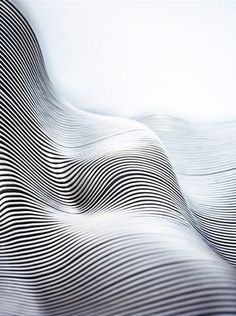 |WSSS|RSCHN| Love the undulating form