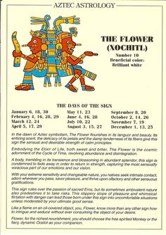 Items similar to Vintage Aztec Astrology postcard: The Flower; from Zodiac Unlimited on Etsy Vintage Aztec Astrology postcard: The Flower from Zodiac Astrology Numerology, Astrology Zodiac, Zodiac Signs, Mayan Astrology, Astrology Signs, Aztec Symbols, Taino Symbols, Mayan Symbols, Egyptian Symbols