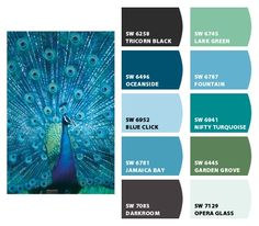 Jewel tone paint colors this weeks color palette jewel tones best Peacock Blue Paint, Peacock Color Scheme, Paint Color Schemes, Peacock Colors, Peacock Feathers, Peacock Bedroom, Peacock Decor, Peacock Theme, Color Pallets
