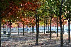 Der Herbst @ Berlin, Deutschland.