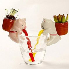 Mini Auto Water Absorption Animal Potted Plants Office Desktop Plant,Animal Panda *** Be sure to check out this awesome product.