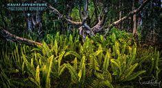 Magical Forest, Kauai- Kauai Adventure Photography Workshops wwwkauaiphotoworkshops.com