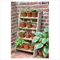 step ladder herb garden - look at how adorbs @Mary Anna Diehl Long @Angela Mauloni (LETS DO THIS)