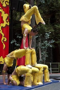 Golden Lion Chinese Acrobats are back this year. Show times are 7 p. Stupid Human, Golden Lions, Acrobatic Gymnastics, Dance Instructor, Partner Yoga, Body Electric, Contortion, Dance Photography, Female Images
