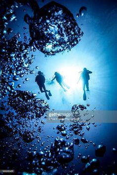 Stock Photo : Underwater silhouette of three scuba divers and bubbles, Bali, Indonesia