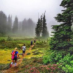 Into the Mist . #Photo @skiericcarter  Awesome morning guiding some runners…