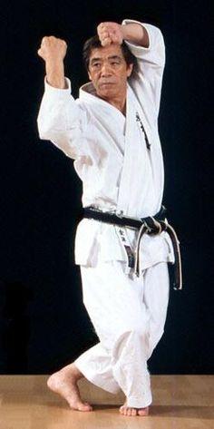 494d81722 Karate Training, Martial Arts Training, Karate Club, Tai Chi For Beginners,  Fight Techniques, Shotokan Karate, Kanazawa, Dojo, Taekwondo