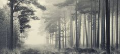 Exhibition - Landscape Photographer of the Year 2013