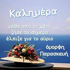 Good Night, Good Morning, Beautiful Pink Roses, Greece, Amazing, Quotes, Life, Dresses, Decor