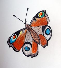 A Butterfly For Friday | Alma Schouman's blog
