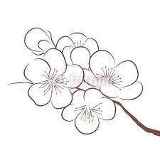 Resultat De Recherche D Images Pour Dessin Facile Fleur Exotique Fleur Dessin Facile Fleur De Cerisier Dessin Dessin De Fleur