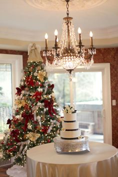 Love the idea of the cake table near a tree, real nice