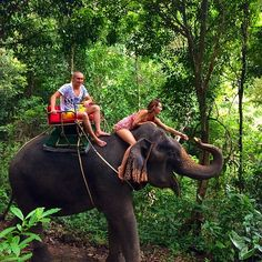 Тренинг на слонах, по диким джунглям. Деревня Ban Changthai, остров Koh Chang! 🌴🐘☀️❤️ #island #trip #thai #thailand #elephant #iloveelephant #love #treking #swimwithelephants #sun #sumer #happy #happyeyes #happylife #smile #smilingelephant #mylife #mysweetyhoneynazarenko #myhappywithilyanazarenko #embrace #островслонов #girl #model #dushka #dushkavera #dushinavera #veraandilya