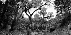 12x24 Fine Art Panoramic  Kolob Canyon by JasonSpeerPhoto on Etsy, $40.00