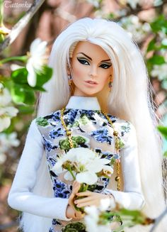 Lovely Dolls. Куклы FR, Poppy Parker & others