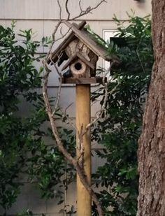 Sweet birdhouse in Yountville, CA.