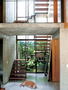 The house of architect Alejandro Rosuti Kotti, Buenos Aires Concrete Facade, Concrete Design, Beautiful Interiors, Beautiful Homes, Interior Stair Railing, Ideal Home Show, Stairs Window, Open Staircase, Modern Stairs