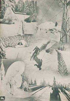 White stag ski poster - 1960's