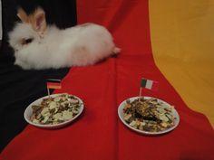 Der NRW-Hase ist diesmal sehr zögerlich und legt beim Orakel zum Spiel Deutschland-Italien lieber eine Ruhepause ein:  http://www.ausflugsziele-nrw.net/nrw-hase-tippt-deutschland-italien/