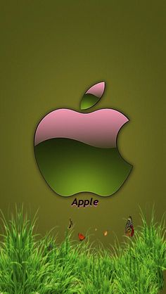Green and Pink Apple