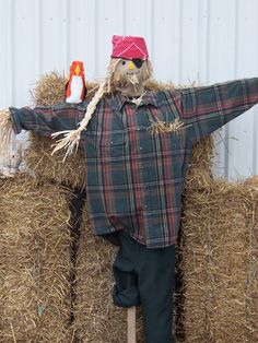 Pirate Scarecrow! Fall Fest!