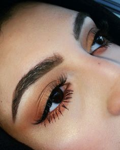 brows lashes