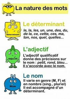 Educational infographic : Grammaire : nature et fonction des mots Ecole élémentaire Victor Chapelliere French Verbs, French Grammar, French Phrases, French Language Lessons, French Language Learning, French Lessons, Foreign Language, Spanish Lessons, Spanish Language