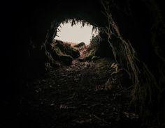 alice in wonderland Sombra Lunar, Narnia, Dibujos Dark, Wonderland, Merian, She Wolf, Story Inspiration, Writing Inspiration, The Villain
