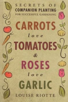 Carrots Love Tomatoes & Roses Love Garlic: Secrets of Companion Planting for Successful Gardening: Amazon.co.uk: Louise Riotte: Books