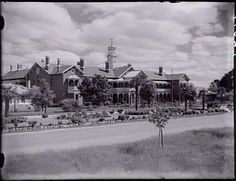 """Australia - December 20, 2015 by Allan Clarke  ~  Coorie woman Nicole Cassar's family tree is stark testament that that intergenerational trauma is an insidious, silent harbinger that spans decades & generations  