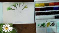 Мастер-класс по рисованию жука акварельными карандашами