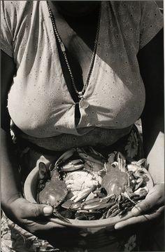 Pedro Meyer - frutos del mar 1935