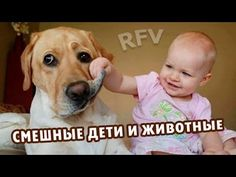 Дети и животные 4 · Приколы с животными 2015 · Cats, Dogs & Cute Babies ...