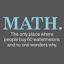 Math Watermelons Funny Quality T SHIRT College Geek Nerd Math Humor Novelty Tee
