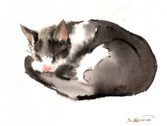 Black And White Cat, original watercolor painting, 8,5 X 11 in, Cat watercolor sketch, black and white cat art, cat lover on Etsy, $61.04 AUD