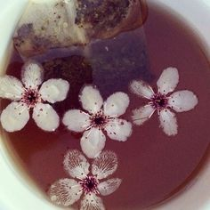 Settle down with me Have some tea Look at the flowers How they float Peacefully❀❃✿☯☮♡