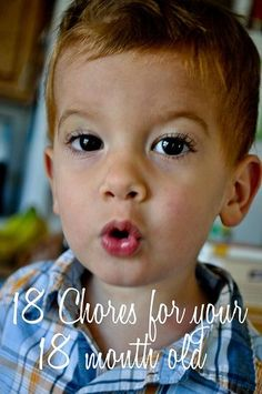 18 chores for your 18 month old. Great routine charts