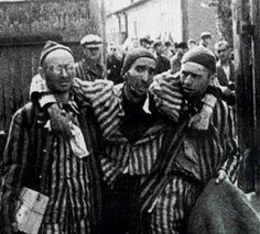 from Devon happy valley gays killed by nazis