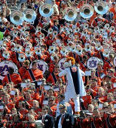 Aubie the Drum Major, Aubie never stops entertaining! That's why he's 8x National Champion of Mascots!