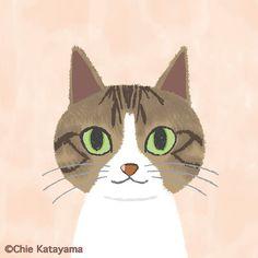 Cats works - Chie Katayama Illustration